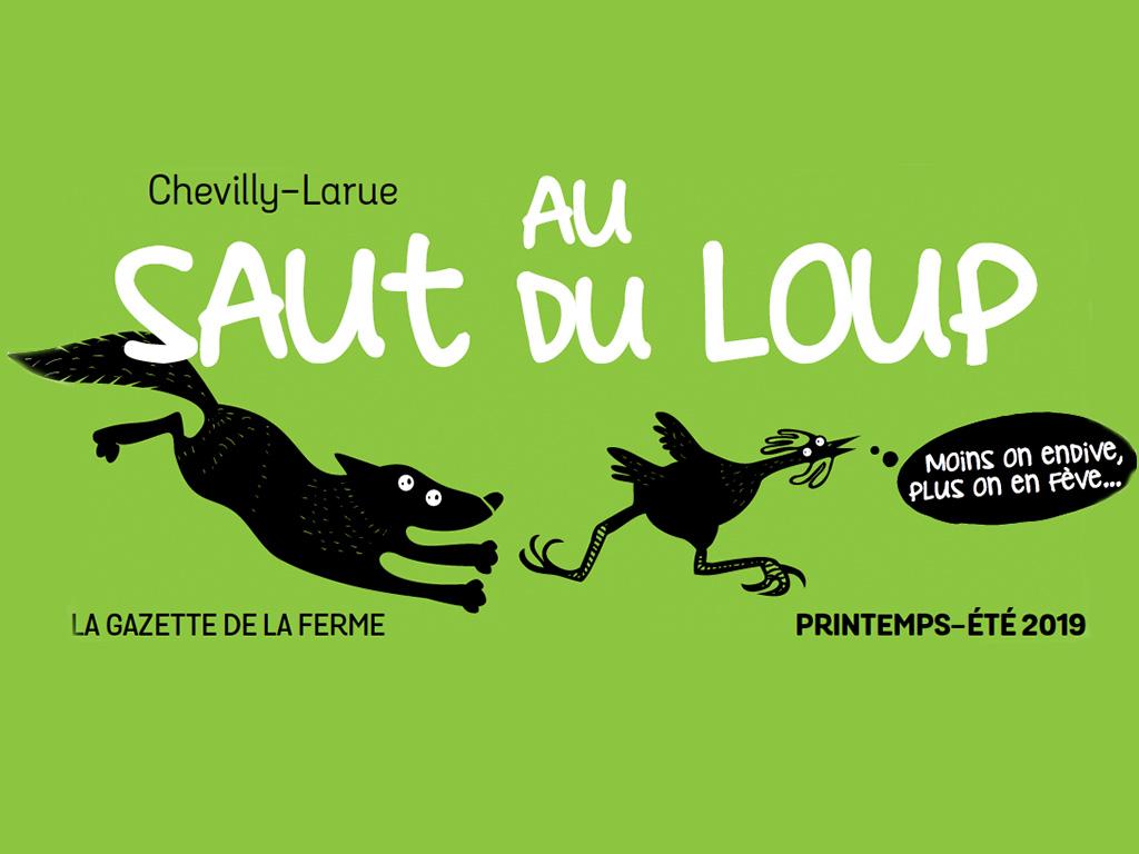 Bouton-gazette